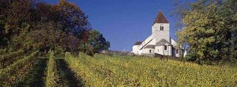 Moving Up the Quality Slope in Burgundy | Vitabella Wine Daily Gossip | Scoop.it