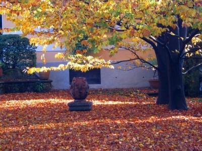 InstaDegusta – I colori dell'autunno in un click in Umbria | ViaggioSocialMente | Scoop.it