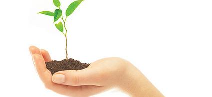 ¿Qué significa el término 'sustentable'? | Noticias de ecologia y medio ambiente | EcoEmprendizaje | Scoop.it