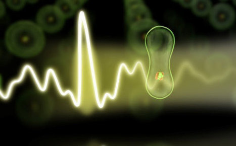 Physicists Test the Response Time of Electrons   Amazing Science   Scoop.it