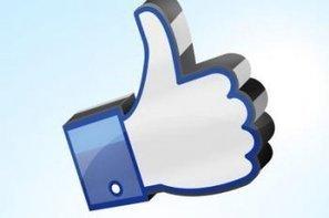 Facebook va permettre à Google d'acheter sur son ad-exchange   Les brèves du Marketing Digital   Scoop.it