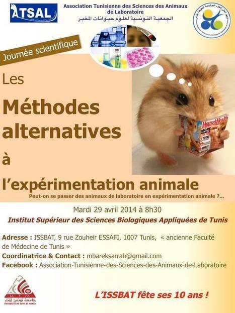 Les méthodes alternatives à l'expérimentation animale | Institut Pasteur de Tunis-معهد باستور تونس | Scoop.it