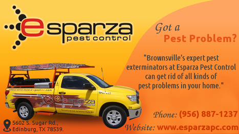 Brownsville Pest Control experts at Esparza | Esparza Pest Control | Scoop.it