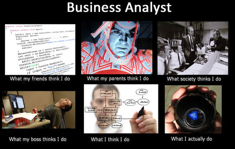 Business Analyst | What I really do | Scoop.it