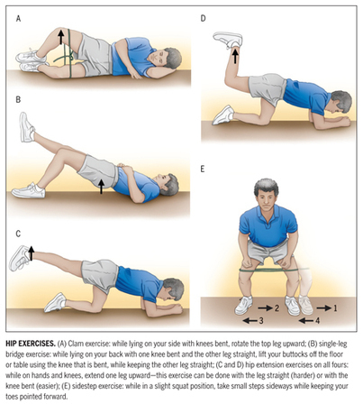 Strengthening Your Hip Muscles: Some Exercises May Be Better Than Others - JOSPT – Journal of Orthopaedic & Sports Physical Therapy | Got Pain? | Scoop.it