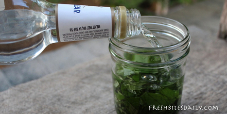 Your new migraine remedy: A simple and inexpensive herbal tincture | Health & Fitness | Scoop.it