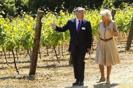 Camilla calls for new name for English sparkling wine | UK wine | Scoop.it