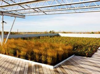 Project Name: Sebert Landscaping Corporate Office - Greenroofs.com | GreenRoofs | Scoop.it