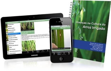 Aplicativo vai ajudar produtores a identificar doenças do arroz | Geoflorestas | Scoop.it