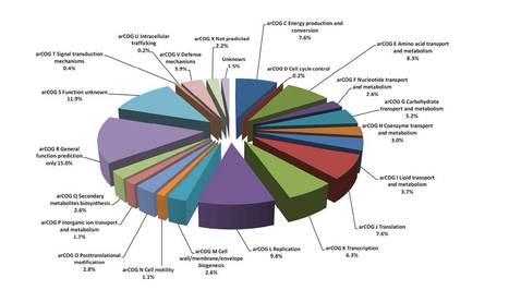Change of carbon source causes dramatic effec... [J Proteome Res. 2012] - PubMed - NCBI | Publications-Albers lab | Scoop.it