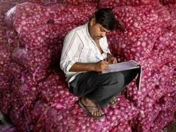 Sheila Dikshit vows to give onions at Rs 35 per kg | News | Scoop.it