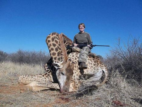 Trophy Hunting: Woman Shoots Giraffe   Trophy Hunting   Scoop.it