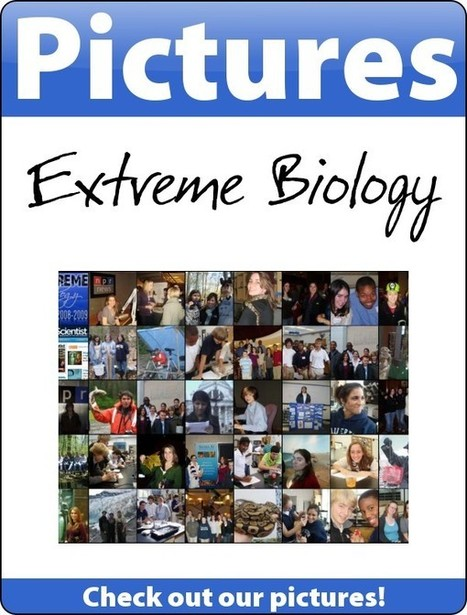 Extreme Biology Blog | | Curating Tools | Scoop.it