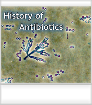 FAS - Antibiotic Resistance Case Study - Module 5.0 | Research project: history of medicine | Scoop.it