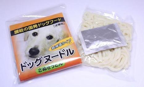 Vous aimez les #udon, offrez-en à votre #chien | What makes Japan unique | Scoop.it