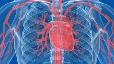 Less invasive #heart valve surgery safe for patients in their 90s #medicine   Messenger for mother Earth   Scoop.it