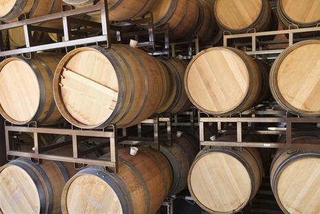 Château d'Yquem, le plus grand liquoreux du monde - Tendances - TF1 News | Carpediem, art de vivre et plaisir des sens | Scoop.it