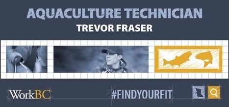 Jobs spotlight on Trevor Fraser, aquaculture technician   Aquaculture Directory   Scoop.it