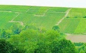 Sur la Route du champagne en fête : Meurville - L'Est Eclair | La Route du Champagne en Fête (@Route_Champagne | Scoop.it
