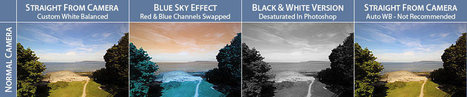 Life Pixel Digital Infrared Filter Comparison Photos | Infrared Photography | Scoop.it