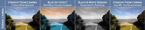 Life Pixel Digital Infrared Filter Comparison Photos | PixelSense | Scoop.it