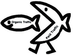 How the Organic Search Landscape Has Changed   Seo   Scoop.it