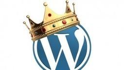 WordPress élu meilleur logiciel de CMS   Actualités Référencement Page 1   Scoop.it