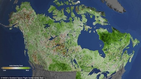 Image that shows global warming is turning the Arctic tundra green | Conformable Contacts | Scoop.it