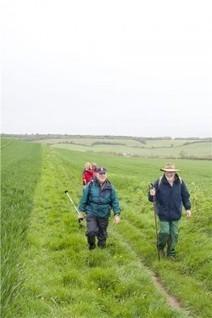 Walks And Walking - The Isle of Wight Walking Festival 2013 | Walks And Walking | Scoop.it