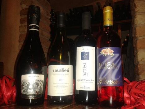 Rossodisera: Deal of the Month | Passerina, Verdicchio di Matelica, Lacrima di Morro d'Alba, Rosa di Montacuto | Wines and People | Scoop.it