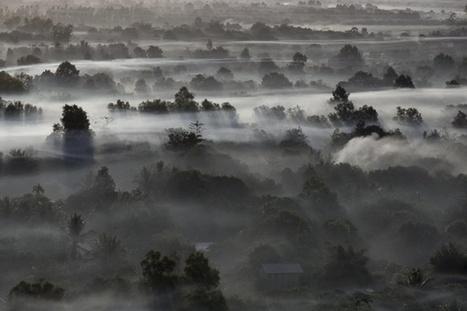Les vrais coûts de la pollution atmosphérique | Ecologie & société | Scoop.it