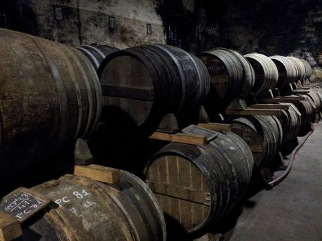 Revue Internet de Viticulture et Oenologie   Le Cognac et son vignoble   Scoop.it