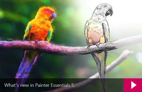Corel Painter Essentials 5 | Integration and Teaching: Ed Tech | Scoop.it