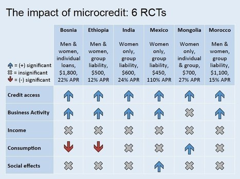 The Final Word on Microcredit? | Evaluation Digest | Scoop.it