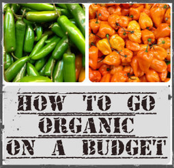 How to go organic on a budget - Parents and kids | Parenting | Scoop.it