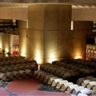 O. Fournier raises the stakes | South American Wines Online | Scoop.it