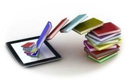 L'innovation dans la lecture : les « enhanced e-books » | Économie ... | Evolutions des bibliothèques et e-books | Scoop.it