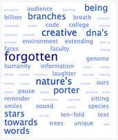 NetPublic » 6 solutions gratuites en ligne pour créer des nuages de mots-clés | Domaine D5 - Travailler en réseau, communiquer et collaborer | Scoop.it