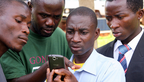 Smartphone app offers cheap aflatoxin test for farmers - SciDev.Net   Erba Volant - Applied Plant Science   Scoop.it