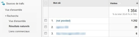 Analyse des (not provided) de Google Analytics | Référencement et Webmarketing | Scoop.it
