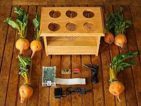 BeetBox Lets You Play Root Vegetables; Latest Handmade Raspberry Pi Coolness | Randomgrid | Scoop.it