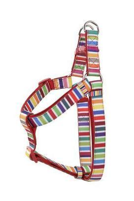 Step in harnesses new | Dog Toys Carrollton Tx | Dog Fetch Toys | Trending | Scoop.it