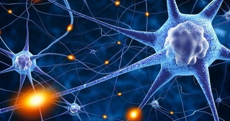Engineers Have Created Artificial Synapses That Mimic the Human Brain | IELTS, ESP, EAP and CALL | Scoop.it