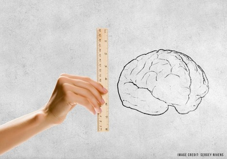 Can growth mindset really grow your brain?Learning and the Brain blog | Learning, Brain & Cognitive Fitness | Scoop.it
