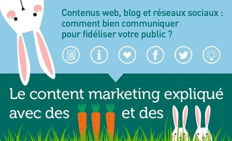 Le Content Marketing expliqué en infographie avec des carottes et des lapins   SoShake   Scoop.it