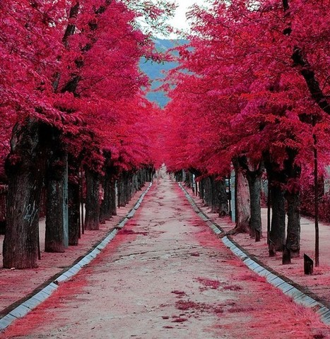 El Escorial - Madrid, Spain | Harmony Nature | Scoop.it