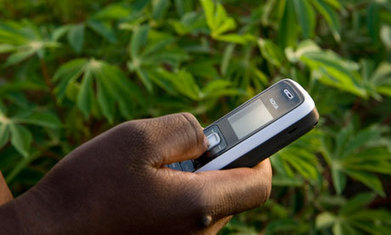 Magpi: providing low-cost access to real-time health data | health and IT | Scoop.it