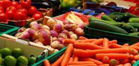 Αφιέρωμα: Αλκαλική Διατροφή & Ελληνικές Υπερτροφές   Natural issues   Scoop.it