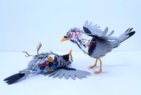 Paper Bird Anatomy by Diana Beltran Herrera | Arts graphiques | Scoop.it