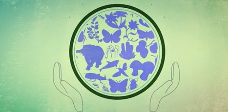 Learning to protect biodiversity [UNESCO] | Educational Apps & Tools | Scoop.it